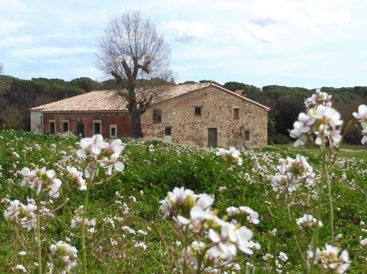 Can Fornaca - Primavera 2018
